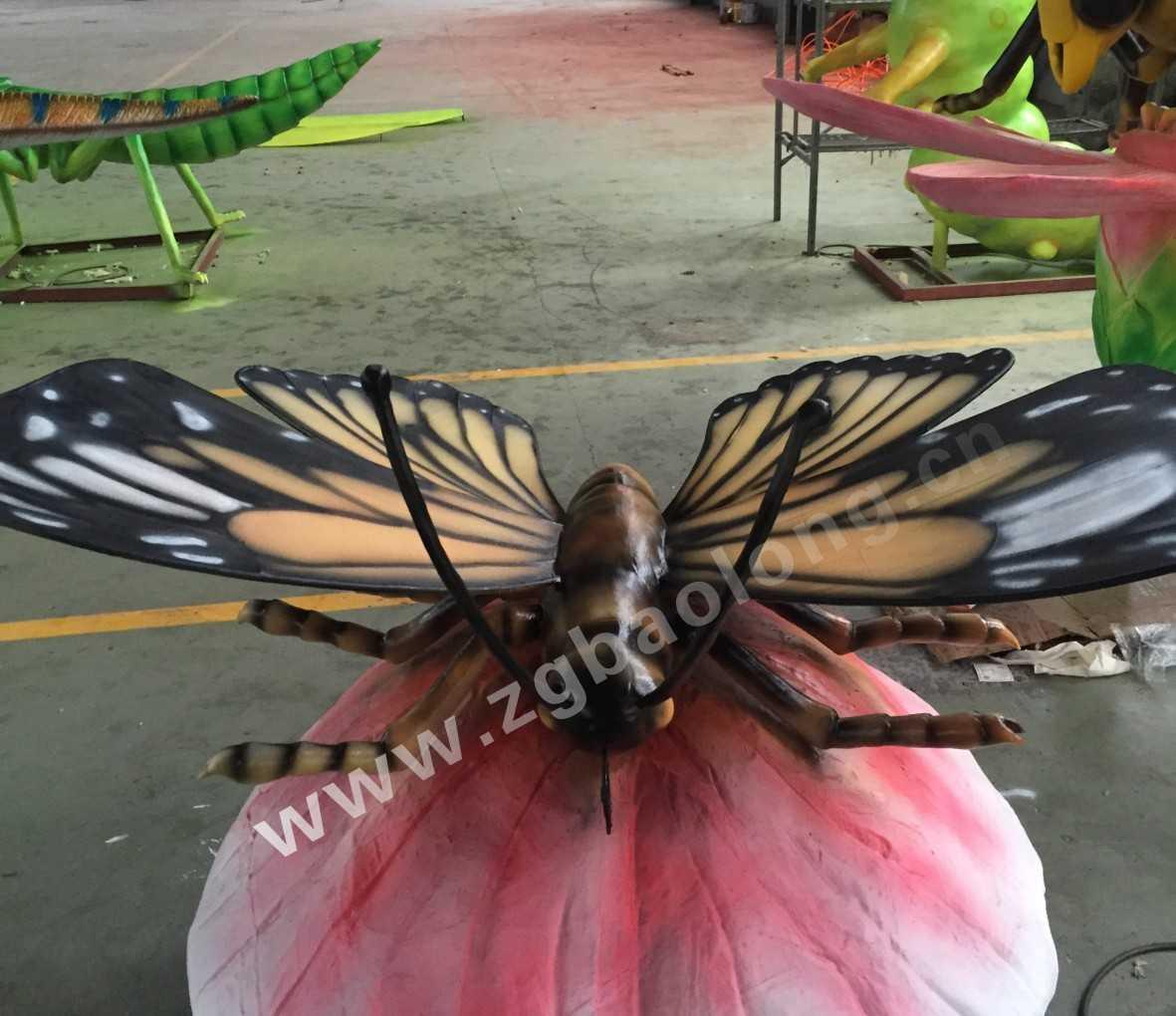 蝴蝶身体结构图名称图